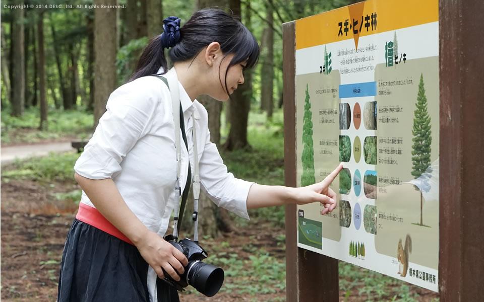 自然公園の散策